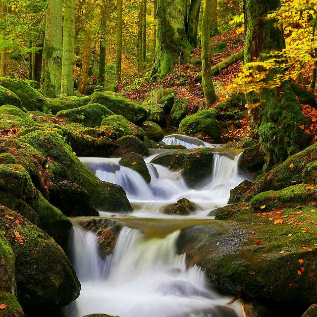 美丽的祖国风景图片